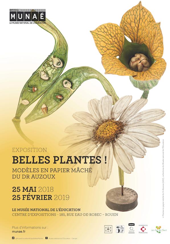Affiche de l'exposition Belles plantes, consacrée aux modèles botaniques du Dr Auzoux, présentée au Musée National de l'Education à Rouen
